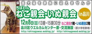 Nekoinuoyakai20131208_320x120_2